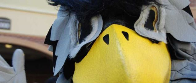 Kennesaw State University Scrappy owl athletic mascot during new student orientation.