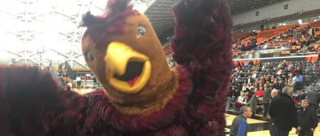 The Hawk, the mascot of the Saint Joseph's University Hawks basketball team.